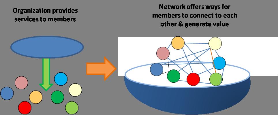 NetworkOrgGraphic